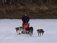 Lindsey mushing
