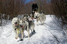 Me on dogsled