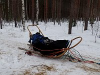 Crashed sled