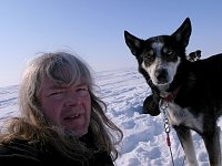 Sledge dog and me